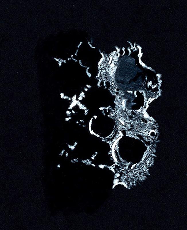 Le X lunaire ou Werner X dessin Carine Souplet