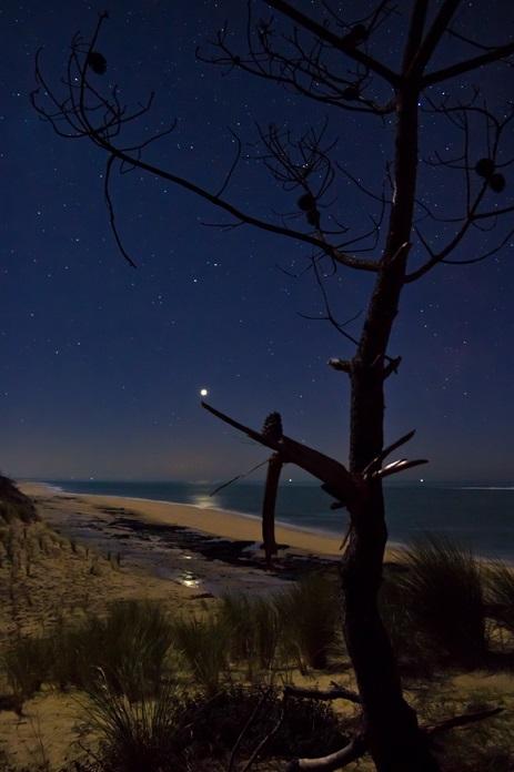 Photo Vénus, l'étoile du Berger se reflète dans la mer.