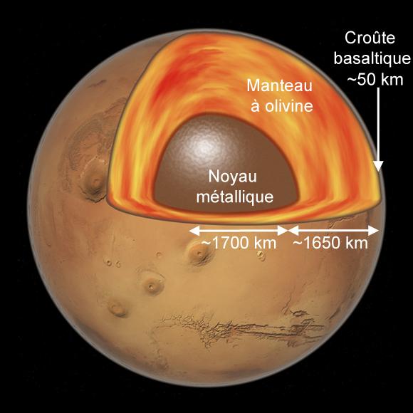 Schéma en coupe de la structure interne de Mars: on y voit le noyau, le manteau et une croute, le tout dessiné dans les tons marron et rouge.