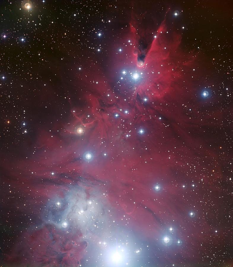 NGC 2264 photographie