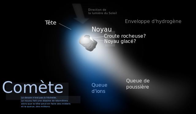 Schéma d'une comète sur fond noir, avec sa queue en deux parties visible.