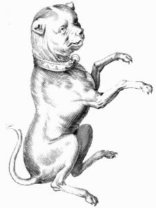 Figure mythologique du Petit Chien