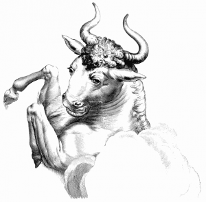 Figure mythologique du Taureau