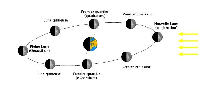 Schéma représentant la Terre au centre et la Lune à différentes étapes de sa période de révolution autour de la Terre : l'éclairage par le Soleil et sa révolution font que l'ombre de la Terre s'y projette et crée les phases pleine Lune, nouvelle Lune, croissants, quartiers...