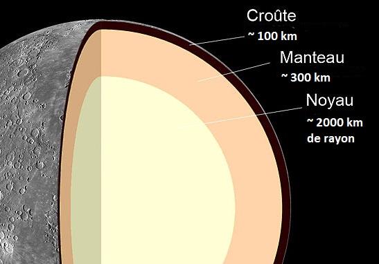 Schéma en coupe de Mercure sur fond noir où l'on voit ses différentes couches : surface en couleurs réelles, croûte en marron, manteau en rose pâle et grand noyau en jaune pâle.