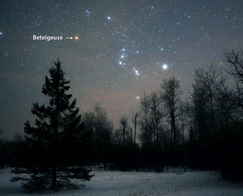 Photo du ciel nocturne au dessus d'une forêt fin décembre 2019 - début janvier 2020 où l'on voit Orion et Bételgeuse.