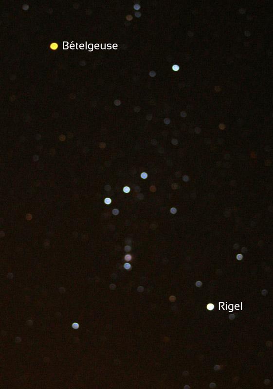 Image floue de la constellation d'Orion qui met en évidence la couleur des étoiles et en particulier le blanc-bleu de Rigel (en bas à droite) et l'orangé-rouge de Bételgeuse (en haut à gauche).