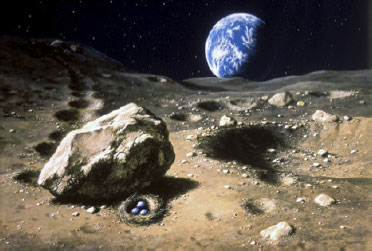 Peinture où l'observateur se trouve à la surface de la Lune, à côté d'un cratère à droite et d'un gros rocher à gauche au pied duquel est abrité un nid avec trois œufs à l'intérieur. En arrière-plan à l'horizon sur fond de ciel noir étoilé, la Terre en bleu et blanc éclairée par le Soleil par la gauche.