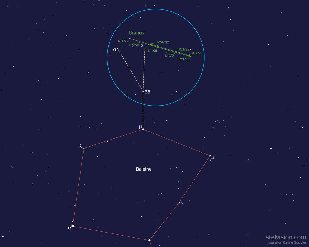 Localisation de la planète Uranus entre septembre 2021 et avril 2022, près de la constellation de la Baleine et des étoiles omicron et sigma Bélier. Le cercle bleu de 6 degrés représente le champ d'une paire de jumelles.