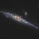 Whale Galaxy NGC4631