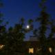 triangle Jupiter-Lune-Saturne au petit matin
