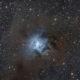 La nébuleuse de l'Iris - NGC 7023