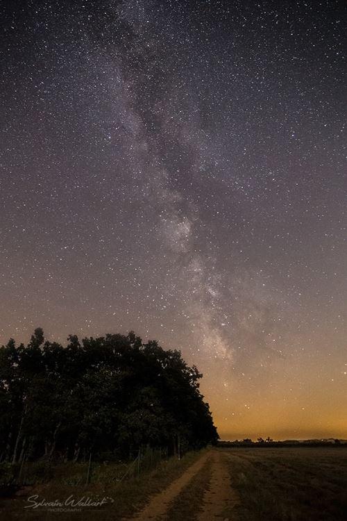 Astronomie sp cial d butants stelvision for Dans cette voie
