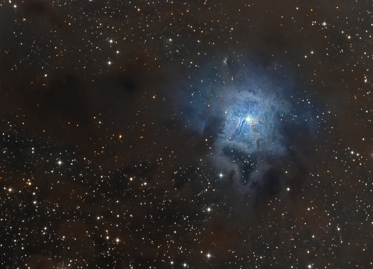 NGC7023  Constellation de Céphée